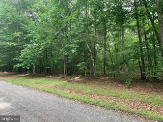 Farm And Agriculture for sale in LOT 39- GOLD RUSH LN. GOLD RUSH LN, Goldvein, VA, 22720