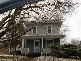Single Family for sale in 116 4th Street, Walnut, IL, 61376