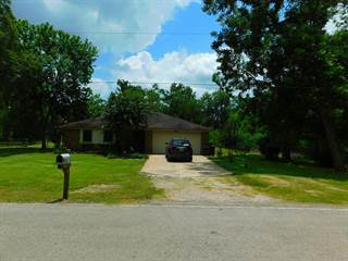 Single Family for sale in 2933 CR 510Z, Brazoria, TX, 77422