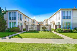 Great Apartment For Rent In Banner Circle Apartments   2 Bed/1 Bath, Long Beach