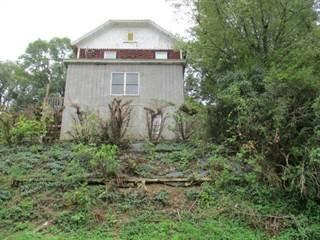 Single Family for sale in 116 Belmont Avenue, Punxsutawney, PA, 15767