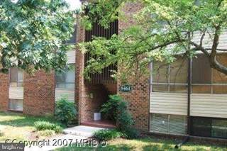 Condo for sale in 8461 GREENBELT ROAD 102, Greenbelt, MD, 20770