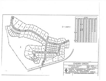 Lots And Land for sale in Cherry Creek Crossing, Ecru, MS, 38841