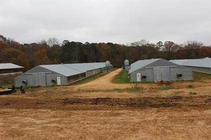 Farm And Agriculture for sale in 2081 Swilley Rd, Wesson, MS, 39191