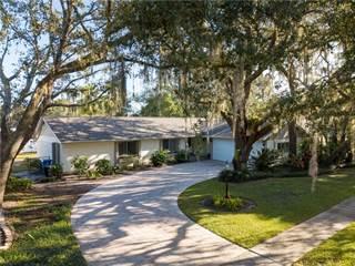 Single Family for sale in 10323 ORANGE GROVE DRIVE, Greater Carrollwood, FL, 33618
