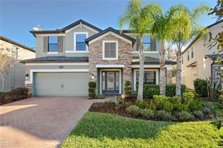 Single Family for sale in 19554 WHISPERING BROOK DRIVE, Tampa, FL, 33647