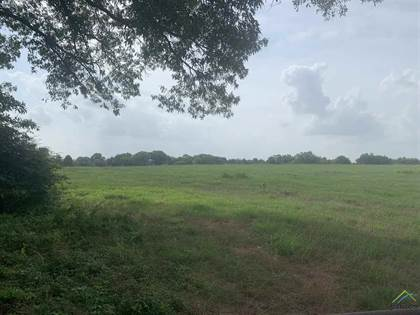 Lots And Land for sale in Tbd #3 Cr 4260, Mount Pleasant, TX, 75455