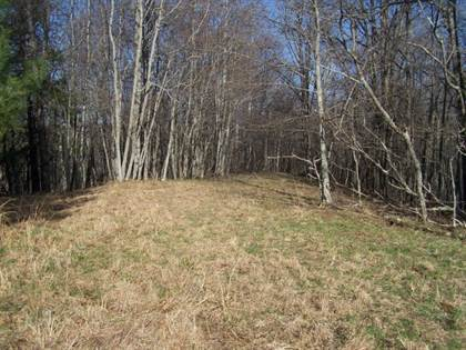 Lots And Land for sale in Tbd Pleasant Grove Road, Independence, VA, 24348