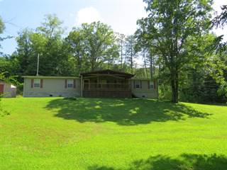 Single Family for sale in 615 HWY 2007, Coldiron, KY, 40819