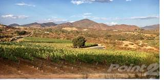 Other Real Estate for sale in Vineyard at Valle de Guadalupe, Ensenada, Baja California