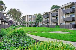 Apartment for rent in Turnleaf Apartment Homes, San Jose, CA, 95117