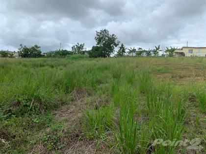 Lots And Land for sale in Road 183 and Road 917, Las Piedras PR, Las Piedras, PR, 00771