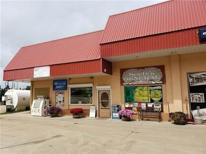 Gas Station For Sale In Alberta >> For Sale Alder Flats Alder Flats Alberta More On Point2homes Com