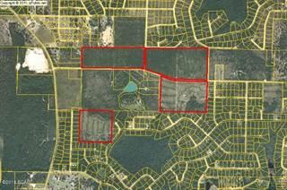 Land for sale in 0 NORTEK Boulevard, Alford, FL, 32420
