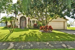 Single Family for sale in 1196 Walnut Grove Way, Rockledge, FL, 32955
