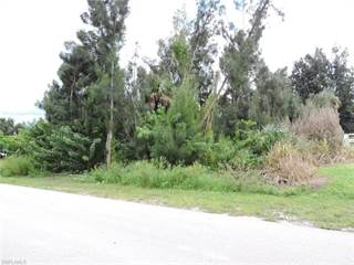Land for sale in 14060 Barkwood ST, Buckingham, FL, 33905
