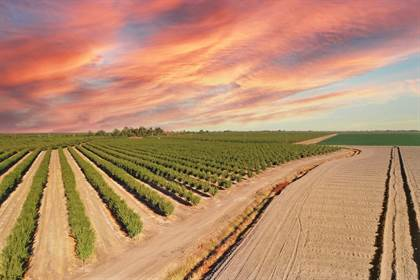Farm And Agriculture for sale in 5520 N Helm Canal Road, Firebaugh, CA, 93622