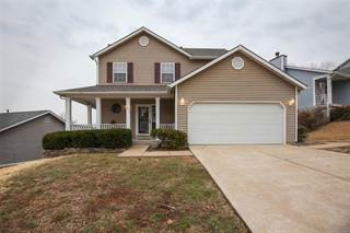 Single Family for sale in 256 Wynstay Avenue, Valley Park, MO, 63088