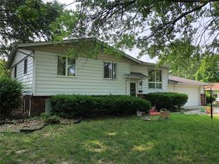 Single Family for sale in 230 Sunset Court, Staunton, IL, 62088