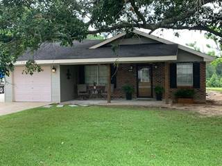 Single Family for sale in 143 SMITH ST., Carriere, MS, 39426