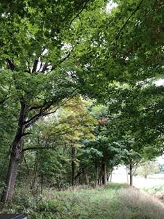 Lots And Land for sale in 6915 Koester 137, Fort Wayne, IN, 46809