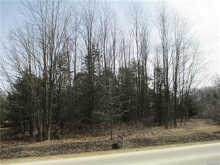 Land for sale in Parcel 1 Duffield, Greater Argentine, MI, 48418