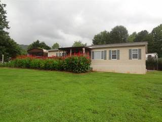 Residential Property for sale in 9 Tiffany Lane, Otto, NC, 28763