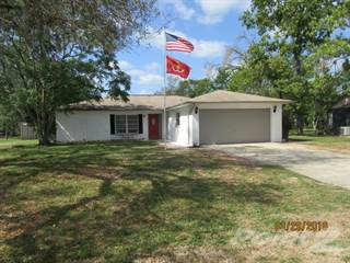 Residential Property for sale in 3501 Rada Lane, Spring Hill, FL, 34606