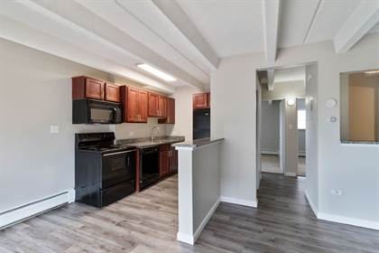 Apartment for rent in 1140 S. Bellaire Street, Denver, CO, 80246