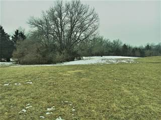 Land for sale in 1198 Turnberry, Innsbrook, MO, 63390