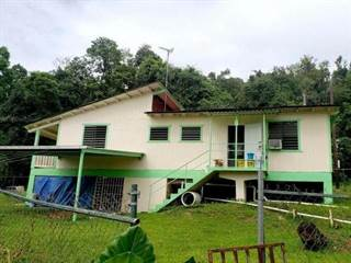Single Family for sale in km 172 CARR 146, Ciales, PR, 00638