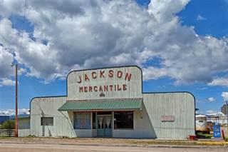 Single Family for sale in 111 Jardine Avenue, Jackson, MT, 59736