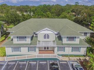 Comm/Ind for sale in 2138 ALT 19 2B, Palm Harbor, FL, 34683