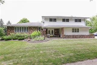 Single Family for sale in 526 South Meadow Lane, Peotone, IL, 60468