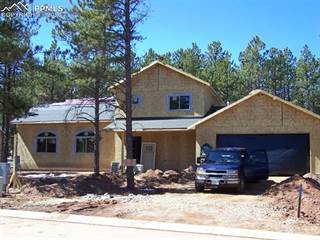 Single Family for sale in 1382 Millstone Lane, Woodland Park, CO, 80863