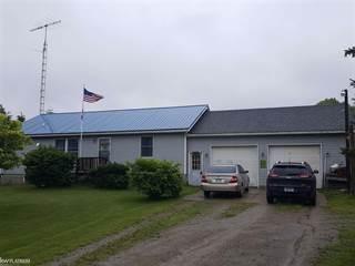 Residential Property for sale in 3668 Aitken, Buel, MI, 48422
