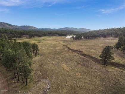 Lots And Land for sale in 0 Beaver Creek FR --, Clifton, AZ, 85922