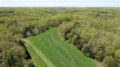 Farm And Agriculture for sale in 24187 Low Gap Road, Warrenton, MO, 63383
