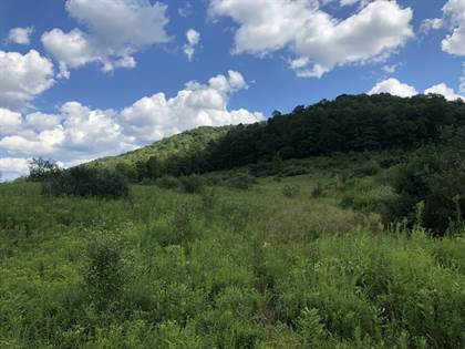Lots And Land for sale in 0 Clear Creek Road, Emporium, PA, 15834