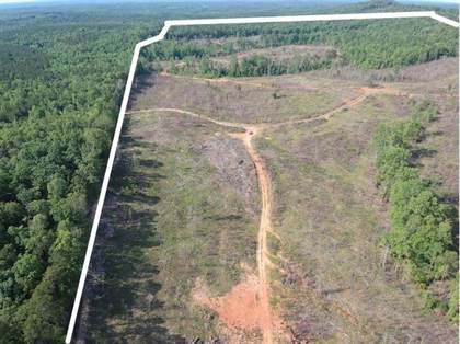 Lots And Land for sale in SMOKE RISE ROAD, Woodland, GA, 31836