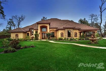 Residential Property for sale in 25419 Azalea Park Drive, Spring, TX, 77389