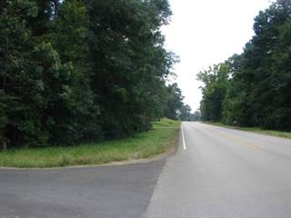 Land for sale in Hwy 252 CR 358 Corner of Hwy 252 and CR 358, Jasper, TX, 75951