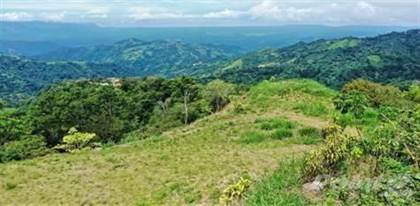 Lots And Land for sale in Estanquillos, Atenas, Alajuela