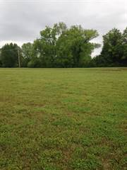 Comm/Ind For Sale In 0 Cayce Ln, Columbia Gardens, TN, 38401