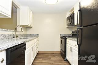 Apartment for rent in The Palmer - 2 Bedroom, Knoxville, TN, 37912