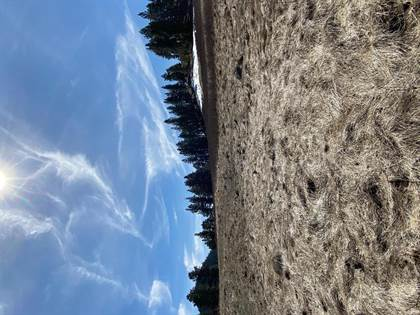 Lots And Land for sale in Tbd Beaverslide Loop, Cascade, MT, 59421