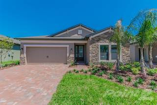 Single Family for sale in 10738 Pleasant Knoll Drive, Tampa, FL, 33647