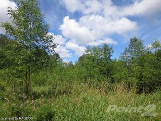 Land for sale in 17 Everett Rd, South Bruce Peninsula, Ontario, N0H 2T0