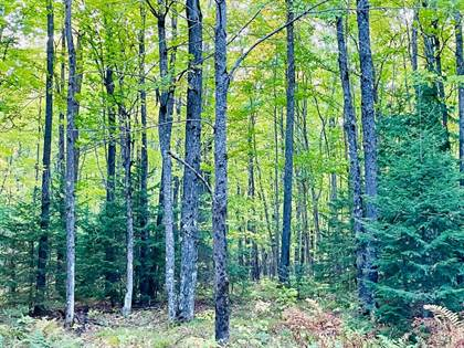 Lots And Land for sale in ON SWANSON RD, Ontonagon, MI, 49953