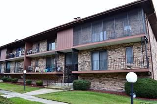 Condo for sale in 11342 Moraine Drive G, Palos Hills, IL, 60465